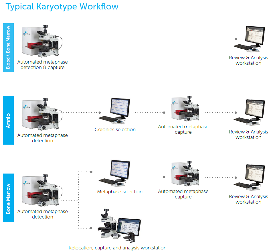 Karyotype Supported Workflows